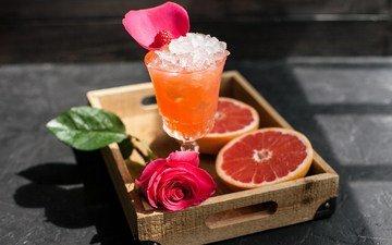 drink, rose, ice, glass, citrus, grapefruit, juice
