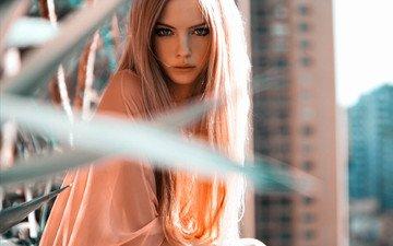 девушка, взгляд, модель, волосы, лицо, skye stracke, скай страке