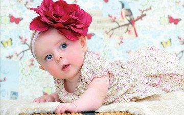 глаза, цветок, взгляд, дети, девочка