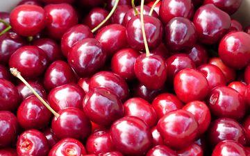 черешня, ягоды, вишня