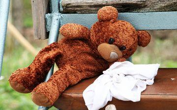 медведь, игрушка, скамейка, плюшевый мишка