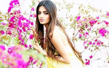 flowering, branches, look, model, spring, actress, bollywood, nidhi agarwal