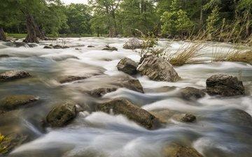 trees, water, river, stones, stream