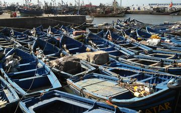 shore, boats, marina, port, morocco, fishing vessel, essaouira