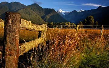 grass, mountains, nature, landscape, the fence, moss, new zealand
