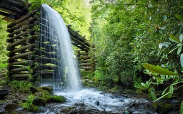 trees, water, river, forest, landscape, foliage, waterfall, stream, cascade