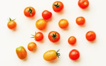 белый фон, овощи, помидоры, томаты, черри
