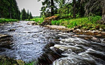 вода, река, природа, лес, пейзаж, ручей, поток