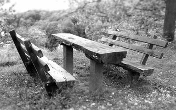 grass, park, black and white, table, benches, shop