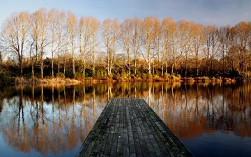 trees, water, lake, nature, the bridge, forest, reflection, landscape, autumn, pierce