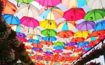 цветы, парк, разноцветные, город, зонтик, зонты, дубай, зонтики