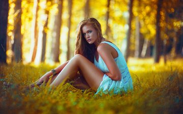 trees, nature, forest, girl, blonde, look, model, legs, posing, lindsey w