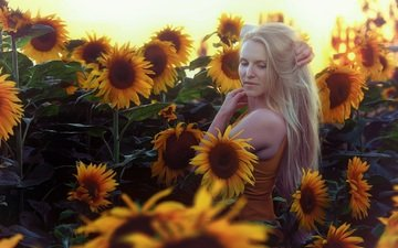 flowers, girl, blonde, summer, sunflowers