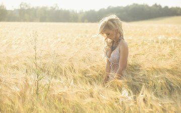 girl, blonde, field, meadow, wheat, olesya