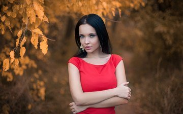 листья, девушка, брюнетка, взгляд, осень, лицо, красное платье, сёрьги, голубоглазая, ангелина петрова