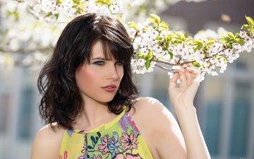 глаза, девушка, фон, брюнетка, лето, взгляд, модель, волосы, губы, лицо, сакура, макияж