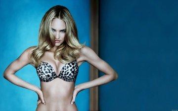 девушка, блондинка, взгляд, модель, волосы, лицо, длинные волосы, кэндис свейнпол, голубоглазая