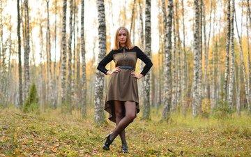 лес, платье, березы, осень, модель, рыжеволосая