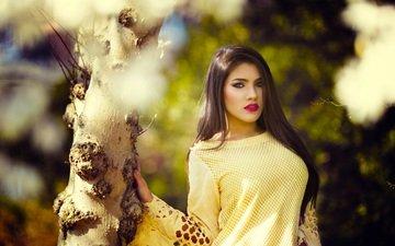 дерево, девушка, взгляд, модель, волосы, лицо, кофта, макияж, стоит