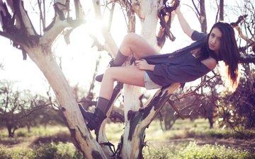 дерево, девушка, ветки, взгляд, волосы, brian storey, джинсовые шорты, кимано