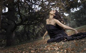дерево, девушка, парк, осень, сидит, черное платье, rebeca cignus