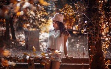 деревья, девушка, осень, забор, блики, шляпа, шорты