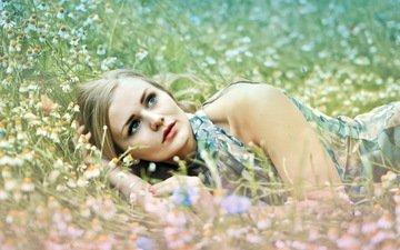 природа, девушка, поле, взгляд, волосы, лицо, полевые цветы