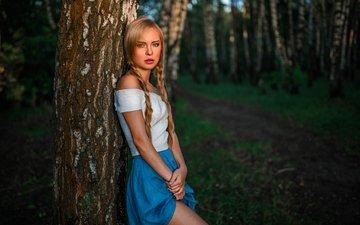 природа, лес, девушка, взгляд, волосы, лицо, виктория, косички, георгий чернядьев, виктория пичкурова