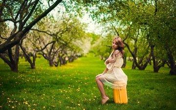 трава, деревья, девушка, взгляд, сад, сидит, волосы, лицо, чемодан
