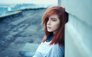 девушка, портрет, стена, волосы, лицо, голубые глаза, рыжеволосая