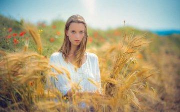цветы, девушка, настроение, поле, лето, взгляд, маки, колосья, пшеница, волосы, лицо