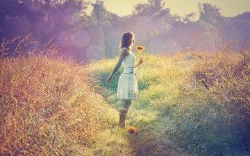 свет, трава, девушка, поле, подсолнух, модель