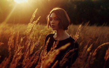 солнце, девушка, поле, взгляд, колосья, волосы, лицо, оля пушкина, ola pushkina