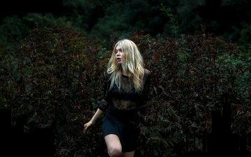 девушка, настроение, блондинка, кусты, модель, черное платье