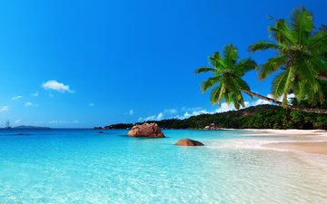 море, пляж, тропики, 1
