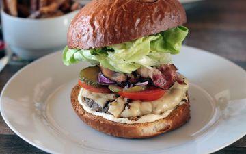 еда, гамбургер, хлеб, овощи, мясо, тарелка, салат, бургер, чизбургер, фаст-фуд, чизбургер мясо