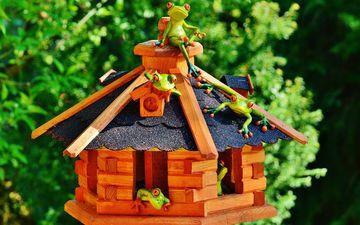 зелень, дом, домик, крыша, лягушки, сувенир