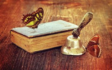 retro, insects, butterfly, book, bell, antiques, wooden surface