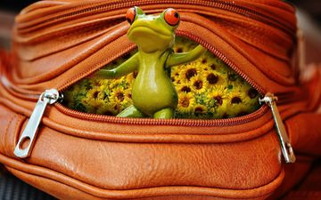 flowers, toy, frog, sunflowers, decoration, bag, figure, souvenir