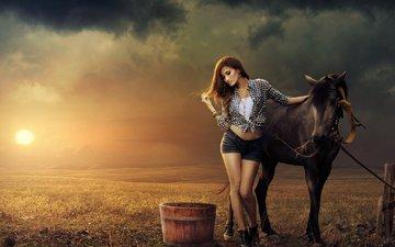лошадь, природа, закат, девушка, поза, поле, конь, шорты
