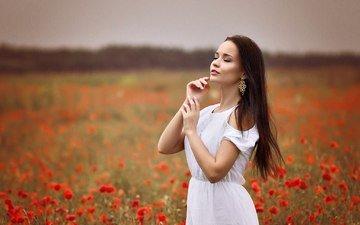 девушка, поле, брюнетка, маки, сёрьги, белое платье, длинноволосая, ангелина петрова