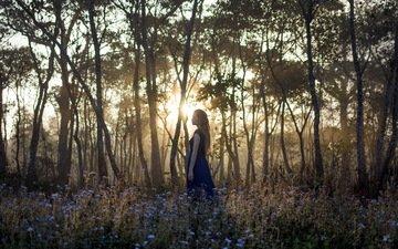 цветы, деревья, лес, девушка, лучи, утро, платье, блондинка