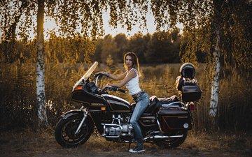 деревья, стиль, девушка, березы, джинсы, мотоцикл, хонда