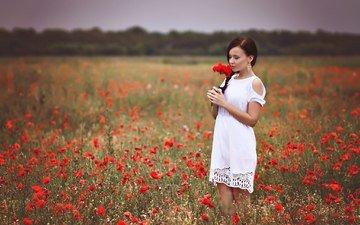 девушка, платье, поле, красные, маки, руки, белое платье