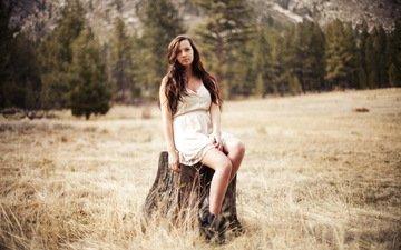 девушка, платье, поле, брюнетка, модель, ноги, пенек, длинные волосы