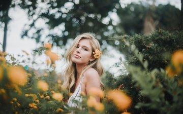 цветы, девушка, блондинка, лето, взгляд, размытость, модель, лицо, боке