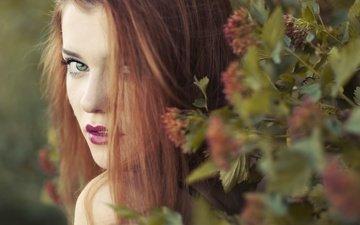 цветы, девушка, портрет, взгляд, лицо, макияж, длинные волосы