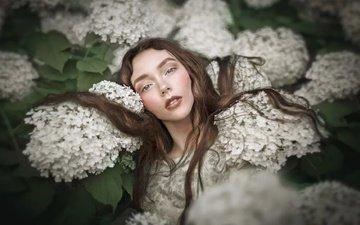 цветы, девушка, взгляд, модель, волосы, лицо, макияж, klaudia kaczmarek