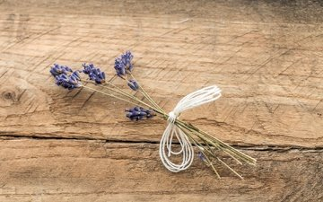 flowers, background, lavender, board, a bunch