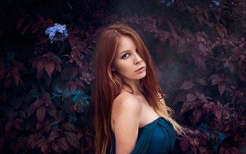 цветы, листья, девушка, портрет, взгляд, волосы, лицо, длинные волосы, рыжеволосая